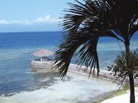 セブ島体験談「常夏のCEBUで楽しく」のイメージ画像