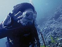 セブ島体験談「セブ島からの癒し」のイメージ画像