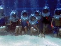 セブ島体験談「出会いとセブ旅行」のイメージ画像