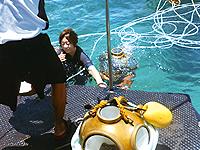 セブ島体験談「セブ旅行の思い出」のイメージ画像
