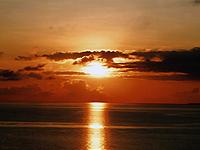 セブ島体験談「初めての常夏のセブ島」のイメージ画像