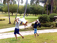 セブ島体験談「セブ島探訪」のイメージ画像