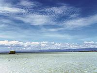 セブ島体験談「皆を陽気にしてくれるセブ!!」のイメージ画像