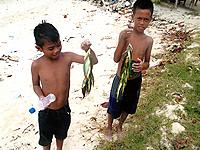 セブ島体験談「南国セブの思い出」のイメージ画像