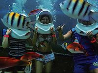 セブ島体験談「初めてのセブ島、楽しかったです!」のイメージ画像