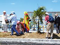 セブ島体験談「心に残る最高の旅」のイメージ画像