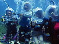 セブ島体験談「再びセブへ」のイメージ画像
