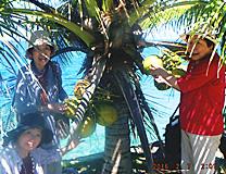 セブ島体験談「あっという間のセブ7日間」のイメージ画像