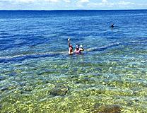 セブ島体験談「セブ島への旅」のイメージ画像