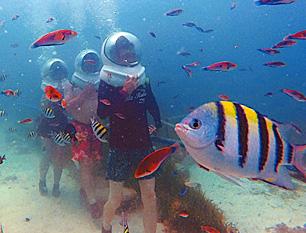 セブ島体験談「楽しかったセブ旅行」のイメージ画像