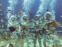 セブ島体験談「素敵なセブ旅行」のイメージ画像