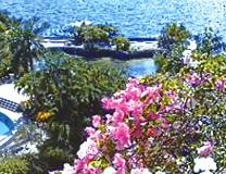 セブ島体験談「優雅なひとり旅を満喫」のイメージ画像