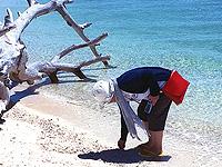セブ島体験談「大自然との共生。セブ大好き」のイメージ画像