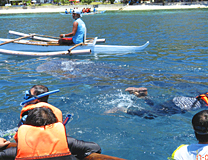 セブ島体験談「憧れのセブ島」のイメージ画像