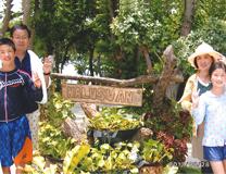 セブ島体験談「5年ぶりのセブ島、そして再会」のイメージ画像