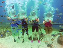 初めてのセブ島体験談「初めてのセブ島」のイメージ画像