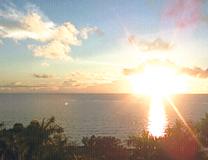 セブ島でゴルフとジンベエザメとパラセーリング体験談「セブ島でゴルフとジンベエザメとパラセーリング」のイメージ画像