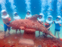 セブ島体験談「みんな笑顔のセブ旅行」のイメージ画像